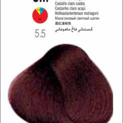 Coloração Colorly 2020 5M (5.5) -CASTANHO CLARO MOGNO 60G-298