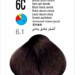 Coloração Colorly 2020 Itely 6C (6.1)- LOURO CINZA ESCURO 60G-279