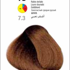 Coloração Colorly 2020 Itely 7D (7.3)- LOURO DOURADO 60G-289